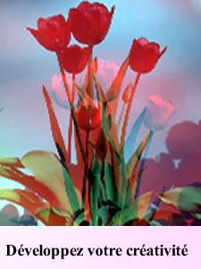 L'Oracle des Fleurs  100
