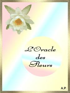 Oracle Rêve d Anges   Découvrez un message angélique Oracle des fleurs   Un  message parfumé des fleurs. 73ecb850f84b